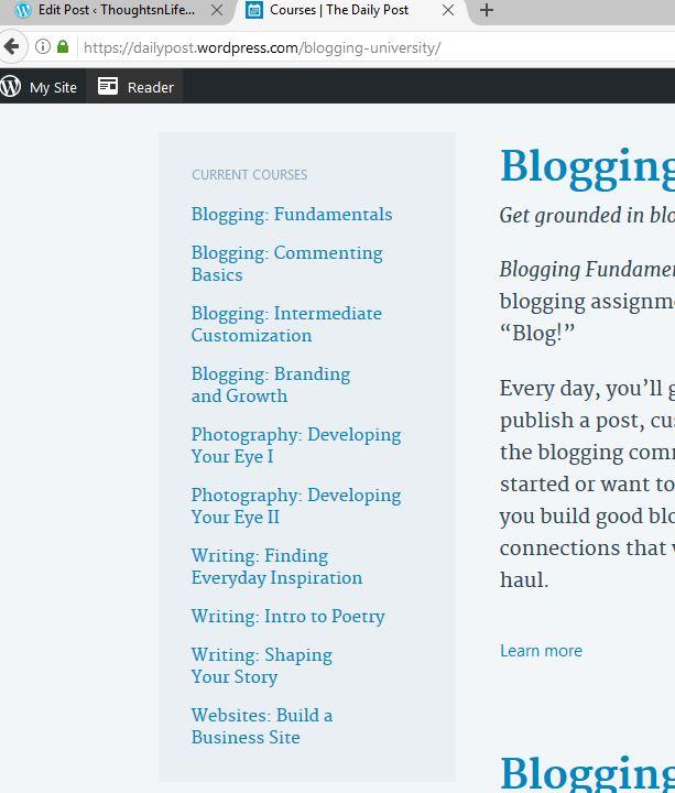 bloggingcourses