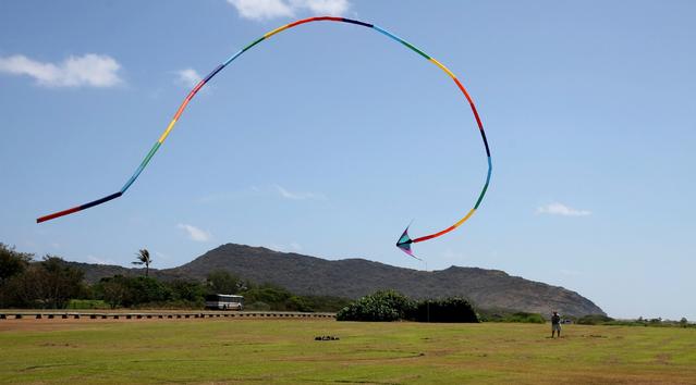 kite-flyer-1431372-639x353