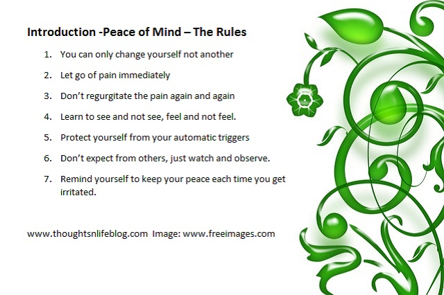 Peace of Mind the rules - inst